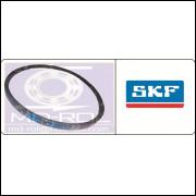Correia Lisa B40 SKF