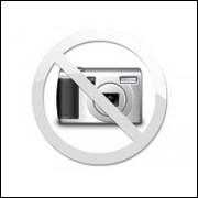 Retentor 01604-BR Sabo 25x42x6mm cod.00004981