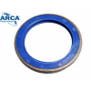 RETENTOR 5057 ARCA (100x120x13mm)